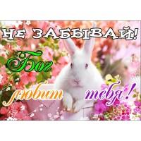 Магнит животные: Не забывай! Бог любит тебя! (кролик)