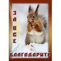 Магнит животные: За  все  благодарите (белочка с орешком)