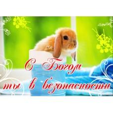 Магнит животные: С Богом ты в безопасности  (кролик)
