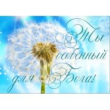 Магниты природа и цветы: Ты особенный для Бога!