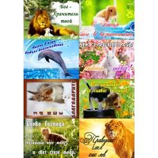 Наклейки листами А5 формата (21.5*15см.) (животные: « Бог -Хранитель твой»)