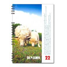 Христианский блокнот: Господь то мій Пастир, тому в недостатку не буду...Пс.22 (две овечки) (90 лист., в клеточку)