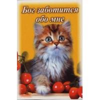 Магнит животные: Бог заботится обо мне  (кот в вишнях)